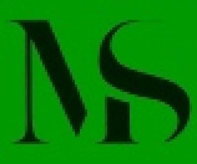 Nelson Borman and Partners (Florida)